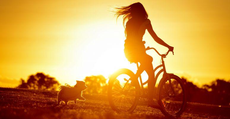 A jótékony napfény, avagy utazás a D-vitamin körül